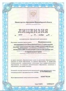 Лицензия на образовательные услуги Level Eleven
